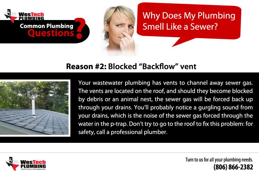 Common Plumbing Questions